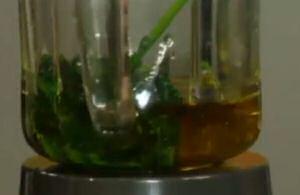 Gaar gekookte peterselie met olijfolie in een blender net voor het mixen